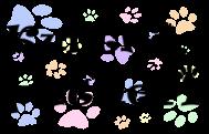 kurtkoy patiler-logo